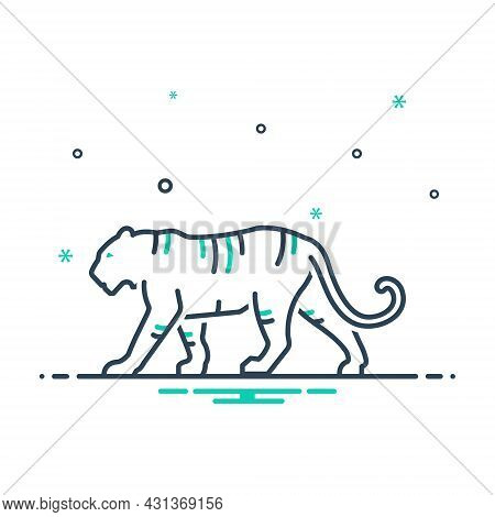 Mix Icon For Tiger Danger Aggressive Carnivorous Panther Nature Animal Jungle Wildlife Zoo