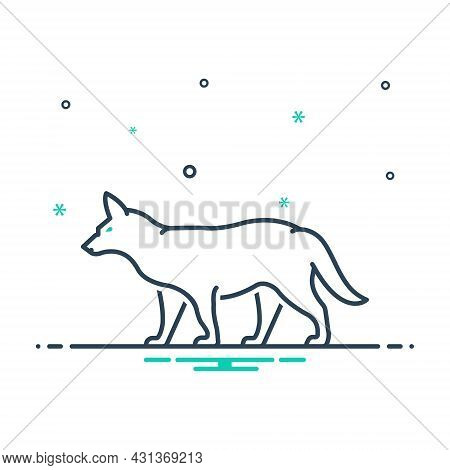 Mix Icon For Fox Omnivores Tail Clever Nature Animal Jungle Wildlife
