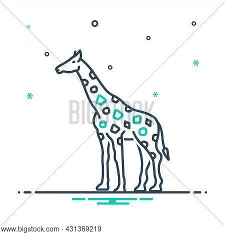 Mix Icon For Giraffe Tall Fauna Mammal Neck Herbivores Nature Animal Jungle Wildlife Zoo