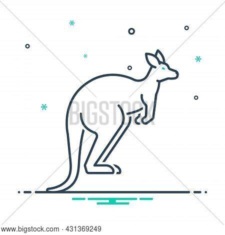 Mix Icon For Kangaroo Australia Pouch Jump Mammal Wallaby Herbivorous Nature Animal Jungle Wildlife