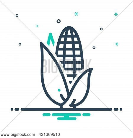 Mix Icon For Corn Cereal Grain Maize Corncob Crop Sweet Foodstuff Vegetable Agriculture Cultivation