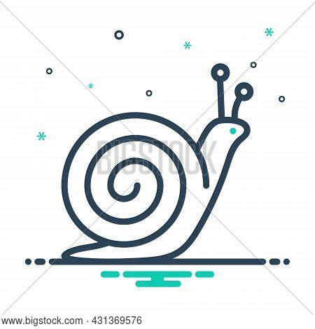 Mix Icon For Snail Scrimshaw Conch Concha Gastropod Marine Aquatic Prejudicial Insect Creature Natur