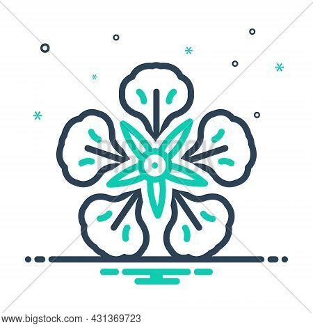 Mix Icon For Delonix-regia Delonix Regia Royal-poinciana Beads Madagascar Corymbs Flamboyant Germina