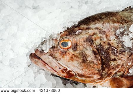Fresh Sea Fish In Ice On The Counter Of The Fish Market.