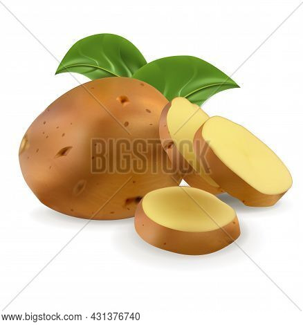 Realistic Detailed 3d Raw Potatoes Whole With Slices And Leaves Set. Vector Illustration Of Organic