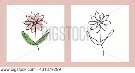 Flower - One Continuous Line, Single Line Drawing Art, Organic Design, Abstract Line With Random Irr