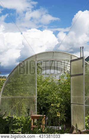 Greenhouse With Vegetables In Autumn. Closing The Growing Season In The Greenhouse.