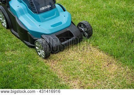 Lawn Mover Machine Cut Green Grass, Hobby Planting Home Garden.