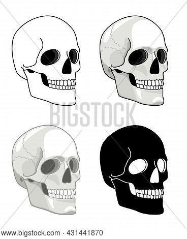 Simple Drawn Skull. Vector Hell Skulls Icons, Tattoo Human Skeleton Heads For Halloween Illustration