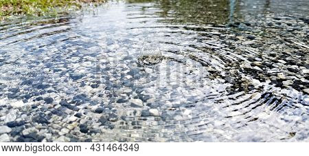 Close-up (eye-level View). Raindrops Hit The Surface Of The Water, And Bounce Like A Flower. Below I
