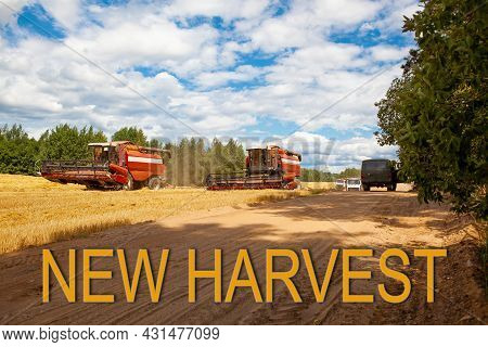 New Harvest. Combine Harvesters In The Field For Harvesting Wheat. Special Equipment On The Field. R