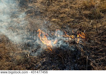 The Grass Is Burning In The Field. Dark Colors Image Of Fire And Smoke Of Burning Grass On A Country