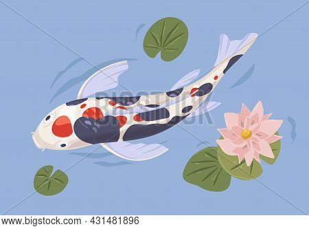 Japanese Koi Fish In Asian Garden Pond With Leaf And Lotus Flower. Chinese Decorative Zen Carp Swimm