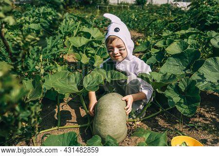 Little Boy In Halloween Ghost Costume. Garden.