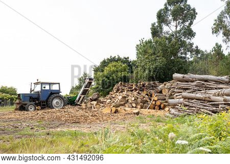 Rural Scene With Stacked Trees And A Tractor With Wood Splitter To Chop Firewood. Copy Space