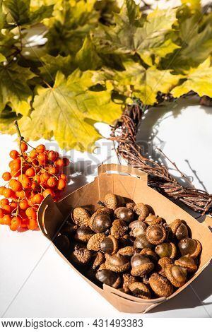 Natural Autumn Decor Of Leaves, Acorns And Mountain Ash. Creation Of A Handmade Wreath. Zero Waste H
