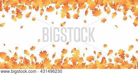 Autumn Leaves Long Border. Fall Maple Composition. October Foliage Frame. Oak Leaf Decor September P