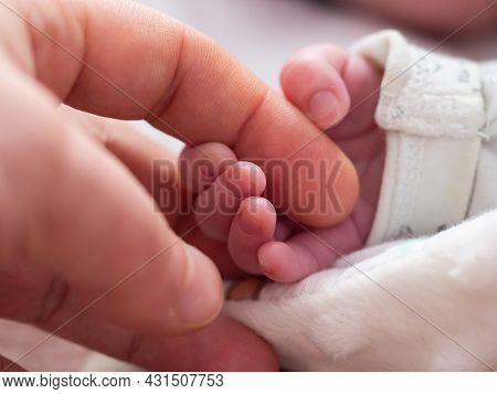 Parent Holding In The Hands Tiny Hand Of Newborn Baby.
