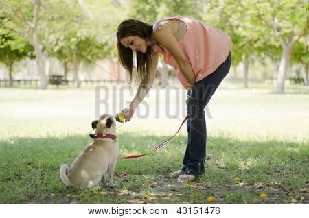 Cute young woman playing ball with her pug dog at a park poster