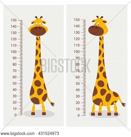 Vector Cartoon Cute Giraffe With Ruler, Growth Meter. Baby Set. Full Length Giraffe, Design Template