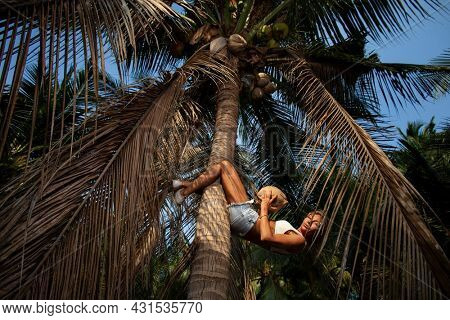 Girl shakes the press on the trunk of a palm tree in a palm grove