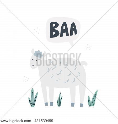 Sheep Says Baa. Hand Drawn Vector Illustration. Cute Animal With Lettering