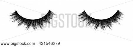 False Eyelashes. Fashion Illustration. Black And White Hand-drawn Image. Vector Eps 10.