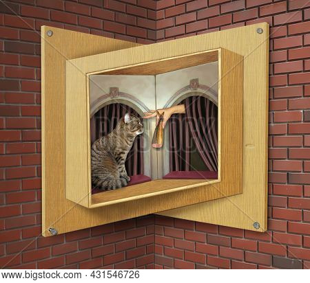 A Beige Cat Eats A Sausage Fish On A Sill Of A Wooden Impossible Window.