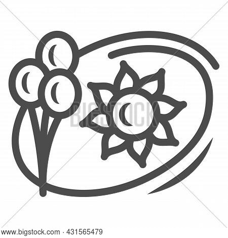 Sun And Balloons Line Icon, Weather And Climate Concept, Summer Holiday Vector Sign On White Backgro