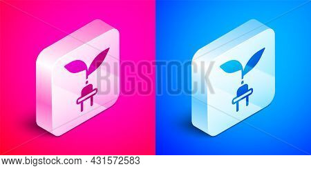 Isometric Electric Saving Plug In Leaf Icon Isolated On Pink And Blue Background. Save Energy Electr