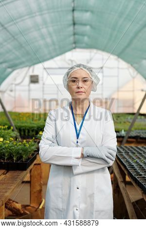 Serious mature female scientist in workwear standing against tables with seedlings in large hothouse
