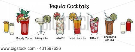 Collection Set Of Classic Tequila Based Cocktails Sunrise, Bloody Maria, El Diablo, Paloma, Margarit