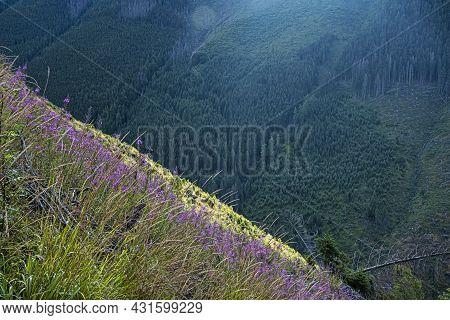 Morning Scene, Western Tatras Mountains, Slovak Republic. Hiking Theme. Seasonal Natural Scene.