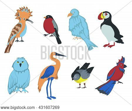 Set Of Cartoon Birds On White Background. Vector Elements For Design.
