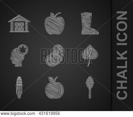 Set Potato, Peach Fruit, Honey Dipper Stick, Leaf Or Leaves, Corn, Human Head With Leaf, Waterproof