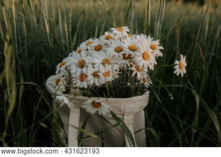 A Bag With A Bouquet Of Daisies Is In The Field. A Bouquet Of Daisies Is In A White Cloth Bag.