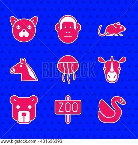 Set Jellyfish, Zoo Park, Swan Bird, Rhinoceros, Bear Head, Horse, Rat And Cat Icon. Vector