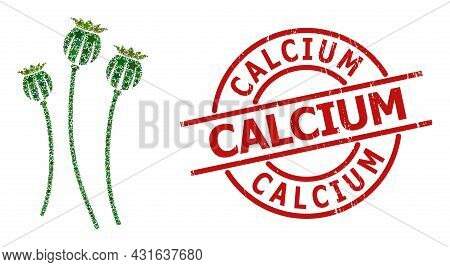 Poppy Plants Star Pattern And Grunge Calcium Seal. Red Seal With Scratched Style And Calcium Word In