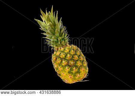 Pineapple Fruit Isolated On Black Background. Ripe Pineapple Isolated On Black Background