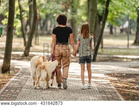 Mother and daughter with golden retriever dogs walking in the park. Family with pets doggies outdoors portrait from back