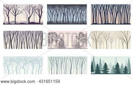 Tree Silhouette With Tall Trunk And Branched Top As Misty Forest Horizontal Backdrop Vector Set