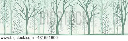 Bare Tree Silhouette With Tall Trunk And Branched Top As Misty Forest Horizontal Backdrop Vector Ill
