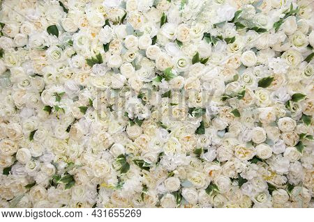 Many Artificial White Roses, Flower As Background And Decoration, Stock Photo Image
