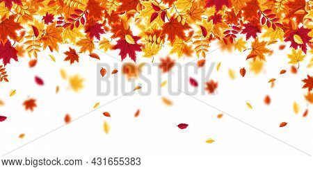 Falling Autumn Leaves. Nature Background With Red, Orange, Yellow Foliage. Flying Leaf. Season Sale.