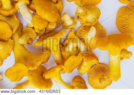 Fresh Yellow Delicious Wavy Vegetarian Chanterelle Mushrooms With Beautiful Texture On White Backgro