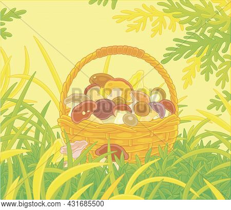 Big Wicker Basket Full Of Picked Mushrooms Among Grass On An Autumn Forest Glade, Vector Cartoon Ill