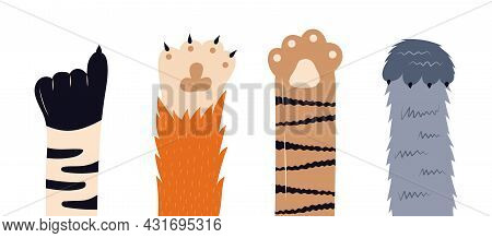 Cats Paw Vector Set. Pet Feet In Hand Drawn Style. Paws Of Fluffy, Pretty, Friendly Kittens