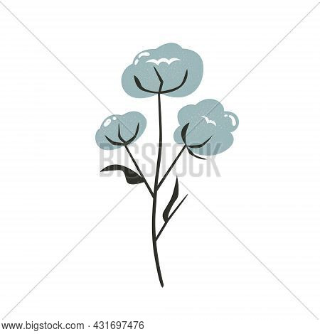 Hand Drawn Illustration Of Cotton Stem With Textured Effect