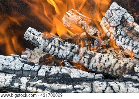 Bonfire Made Of Branches Of Fruit Trees. Flame Flutters In Wind. Coals Covered With Gray Ash. Sawn A