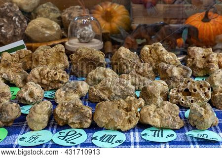 Close-up view of famous white truffles on the stand in Alba, Piedmont, Northern Italy.